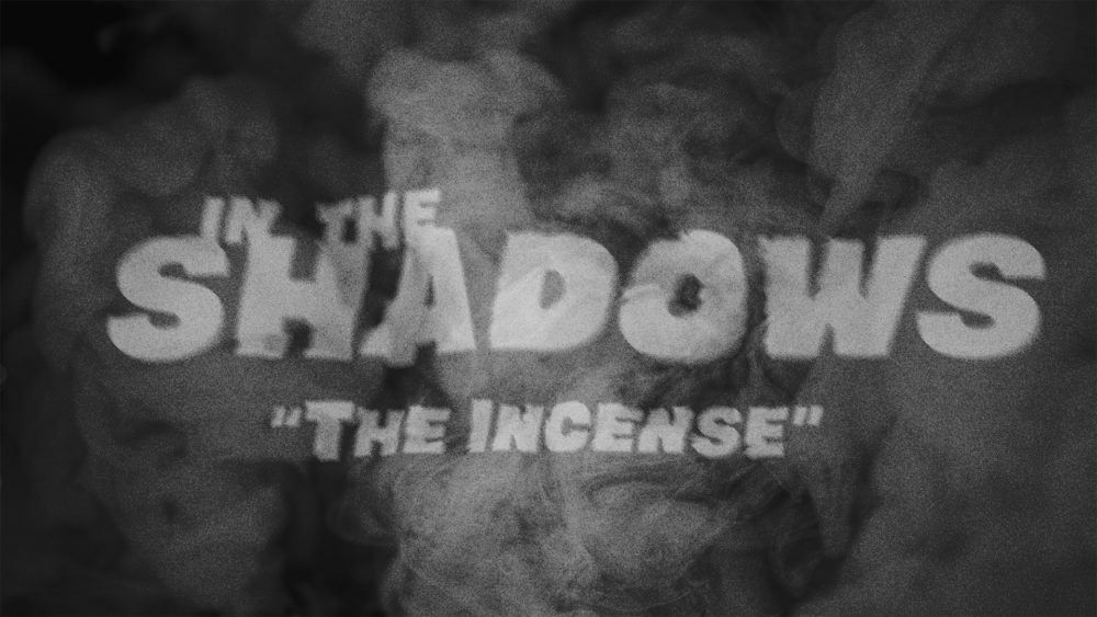 In the Shadows V Image